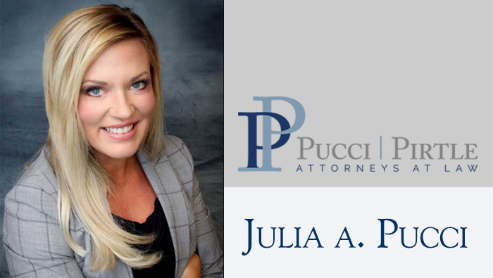 Congratulations to Attorney Pucci On Being Appointed to the Illinois State Bar Association Family Law Section Council!
